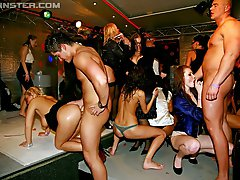 3 pictures - Girls enjoy screwing at a hot horny groupsex party hardcore